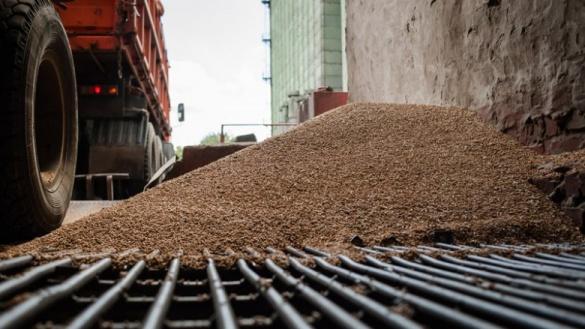 На черкаському державному підприємстві вкрали 1600 вагонів зерна