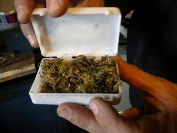 На Черкащині молодик заробляв на життя збутом наркотиків