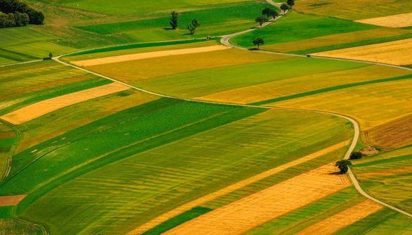 На Черкащині депутати сільради розподілили земельні ділянки між родичами