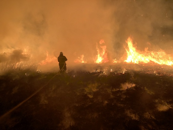 На Черкащині сталася масштабна пожежа на відкритій території (ФОТО)
