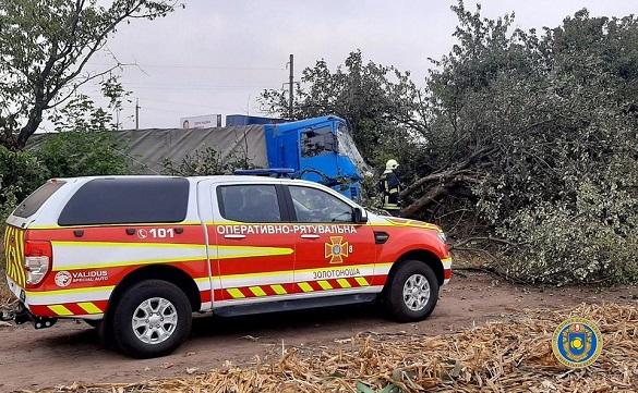 У Черкаській області водій автомобіля в'їхав у дерево (ФОТО)