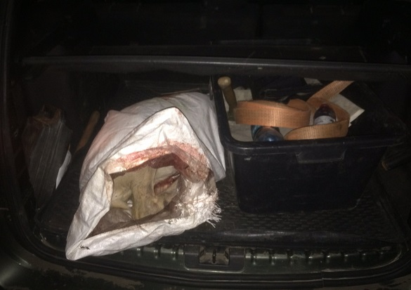 Черкаські поліцейські зупинили автівку, в багажнику якої виявили тушу косулі