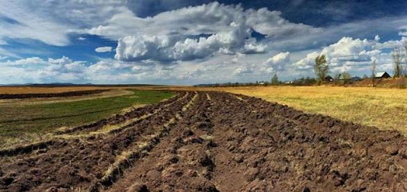 Громадам Черкащини передали понад 10 гектарів земель сільськогосподарського призначення