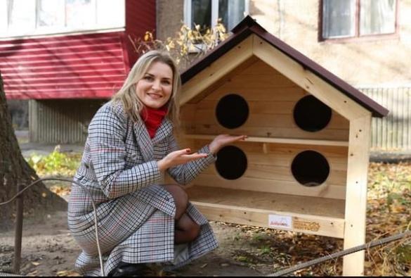 Будиночки, які рятуватимуть тварин в холод, з'являються на вулицях Черкас