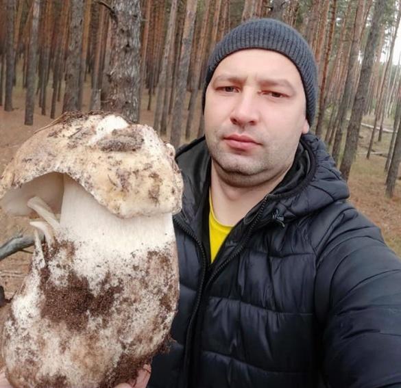 Під зиму: черкащанин знайшов майже кілограмового білого гриба
