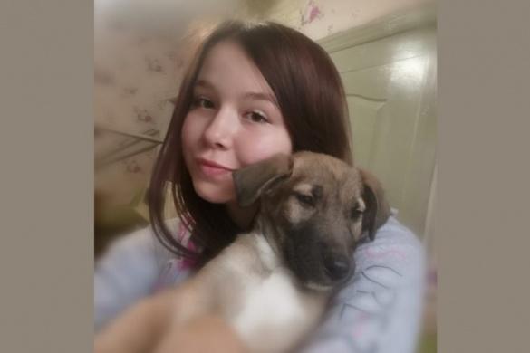 Черкащанка за 5 років урятувала і знайшла господарів для тисячі собак і котів