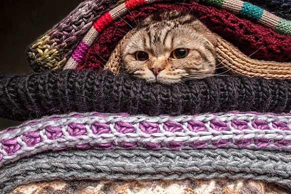 На межі тепла та холоду: яка погода буде завтра на Черкащині