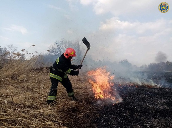 Мешканці села на Черкащині спіймали палія сухої трави