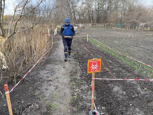 Черкащанка на городі виявила артилерійський снаряд (ФОТО)