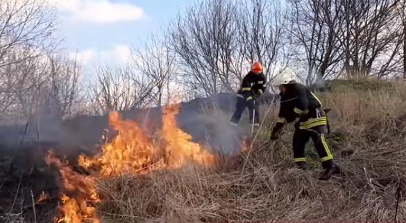 За добу рятувальники Черкащини 9 разів гасили пожежі в екосистемах (ВІДЕО)