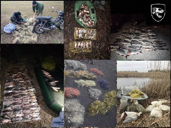 Боротьба з браконьєрами триває: за тиждень на Черкащині інспектори зафіксували майже 100 порушень