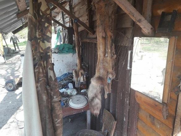 Вбиті єноти та засолена риба: на Черкащині затримали браконьєрів (ФОТО, ВІДЕО)
