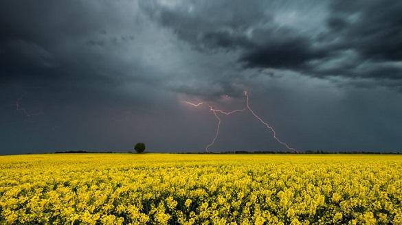 Дощі, град та вітер: у Черкасах та області прогнозують погіршення погодних умов