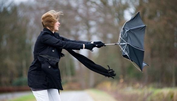 До кінця дня на Черкащині прогнозують сильний вітер