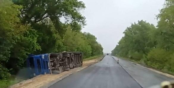 На Черкащині вантажівка з птицею перекинулася на бік (ФОТО)