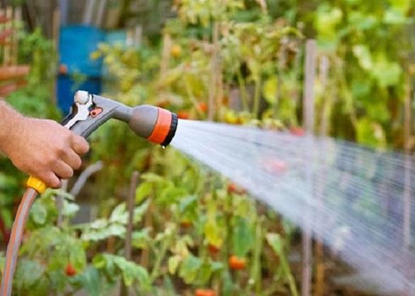 У Смілі штрафуватимуть людей за полив городів питною водою