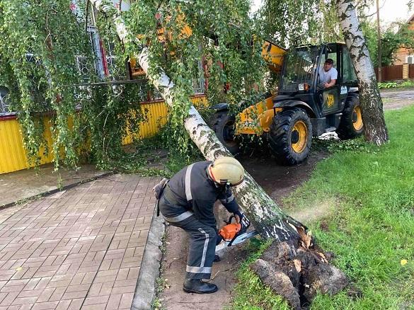 На Черкащині сильним вітром дерево повалило на магазин (ФОТО)