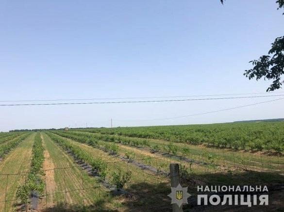 На Черкащині власники ферми побили працівників управління Держпраці, коли ті проводили перевірку