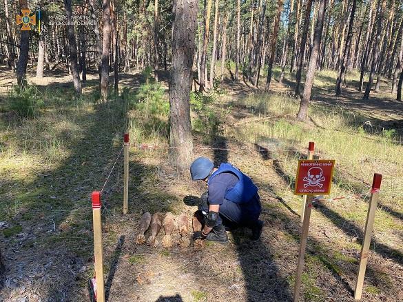 На Черкащині сапери знищили міни часів минулих війн (ФОТО)