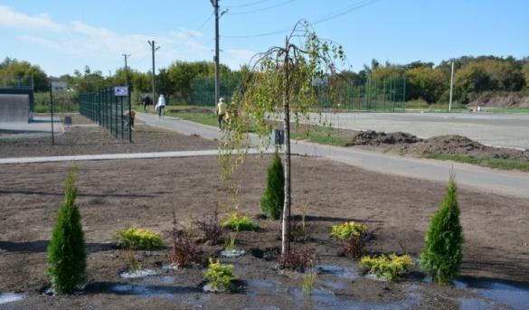У Золотоноші тривають роботи із озеленення набережної (ВІДЕО)