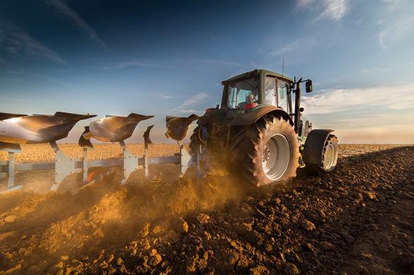 У Черкаській області розпочався посів озимих зернових культур