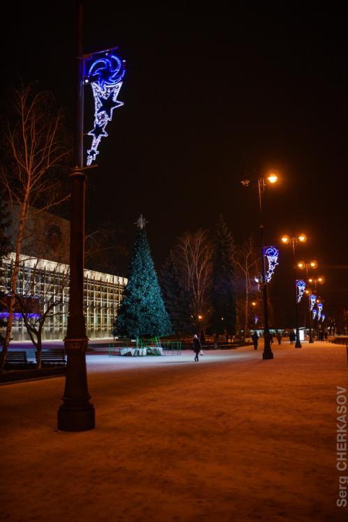 В облаcному центрі Черкащини тепер дві новорічні ялинки