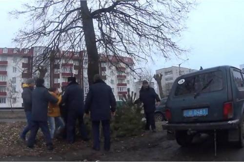В Золотоноші громадський активіст незаконно торгував ялинками (ВІДЕО)