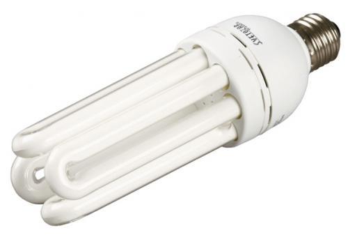 """Черкащани пропонують започаткувати флешмоб """"Подаруй бабусі-сусідці енергозберігаючу лампу"""""""