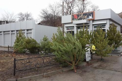 Магазин ритуальних послуг продає ялинки (ФОТО)