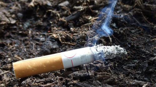 На Монастирищені через паління ледве не згорів будинок (ВІДЕО)