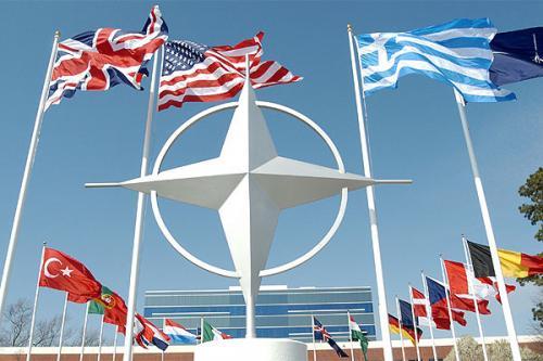 Чи варто вступати до НАТО? (відповіді черкащан)
