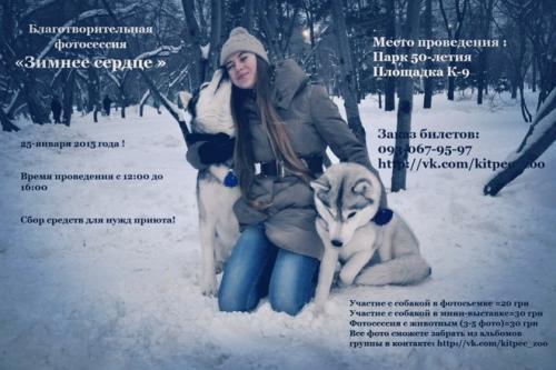 Заради благодійності у Черкасах можна буде зробити фото із собакою