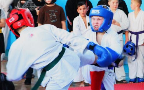 Черкаські спортсмени змагалися з гонзю-рю карате