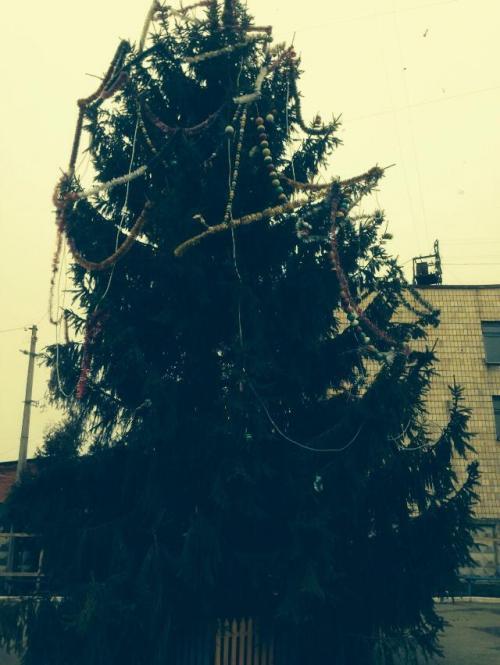 Новорічна ялинка у Шполі лякає людей (ФОТО)