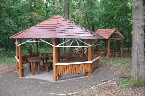 На Черкащині у лісі створюють парковку для автомобілей (ФОТО)
