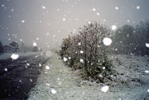 До кінця січня на Черкащині очікуються слабкі морози та невеликий сніг