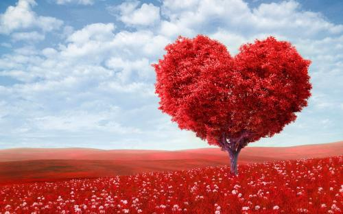 Топ-14 універсальних подарунків на День святого Валентина