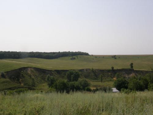 У черкаському селі протестують против появи парку (ВІДЕО)