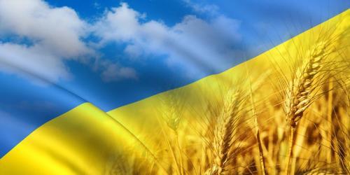 У Черкасах діти створили унікальну карту України (ВІДЕО)