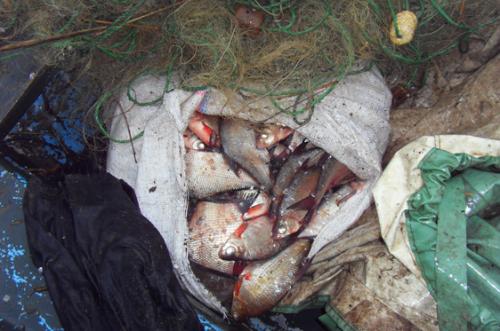 На Черкащині зловили великого браконьєра (ФОТО)
