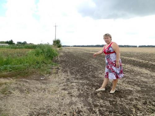 Через обприскування полів у селі на Черкащині постраждали діти