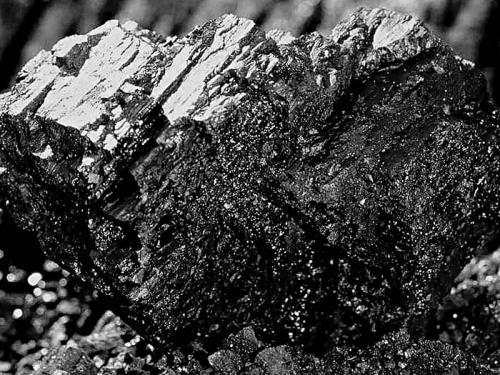 В Черкаській області 12 років незаконно випалюють вугілля (ВІДЕО)