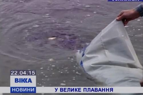 У Дніпро додали нової риби (ВІДЕО)