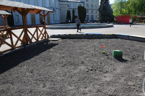 У сквері за Будинком рад винищили троянд на 40 тисяч гривень