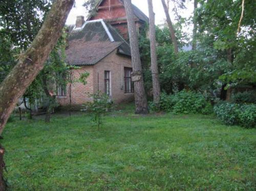 У Соснівці люди вимагають створити парк  (ВІДЕО)