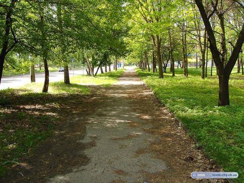 У Черкасах забудовник зводить котеджі у парку (ВІДЕО)