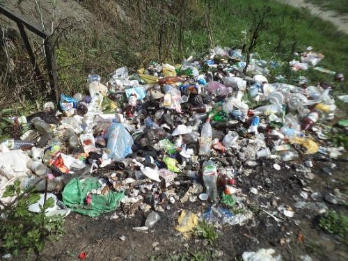 Люди посеред міста викидають сміття (ВІДЕО)
