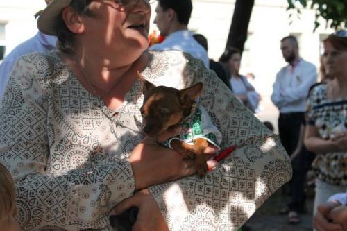 У Черкасах на мегамарш навіть собака була у вишиванці (ВІДЕО)