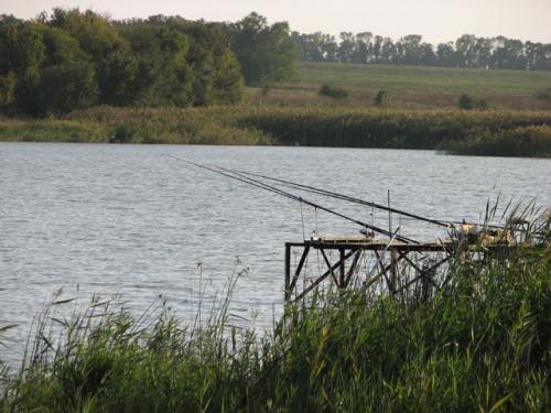 Жителі села на Черкащині воюють із сільським головою за ставок