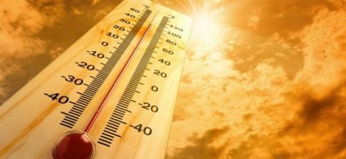Як пережити літню спеку?